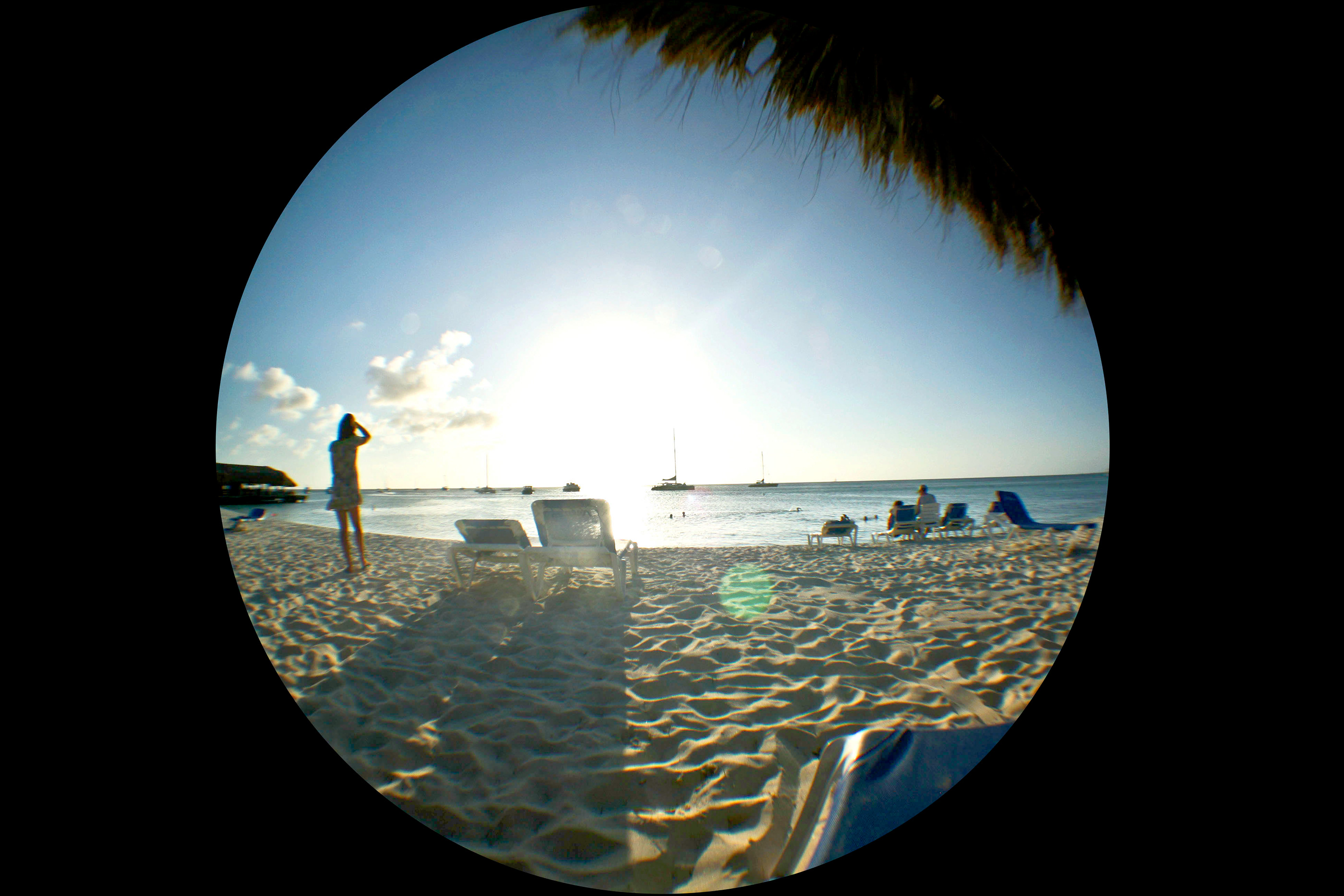 Fisheye Photography Project